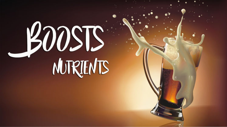 beer for boosts nutrients