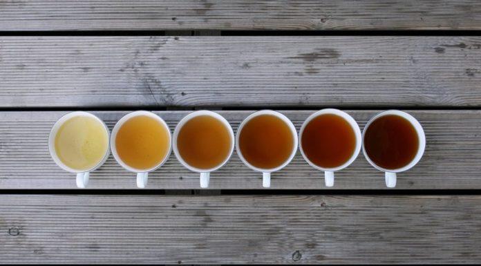 Best-Tea-weight-loss