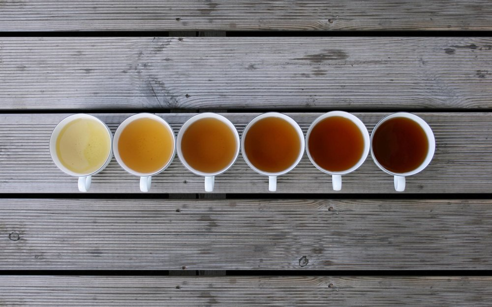 The 6 Best Teas to Lose Weight and Belly Fat - LikesnTrends.com
